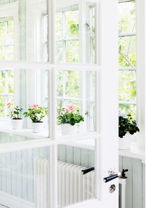 windows ,white.