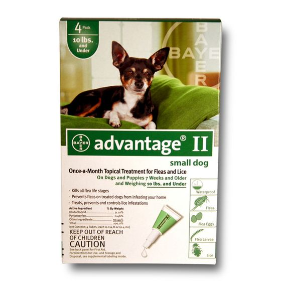 Bayer Advantage Ii For Dogs 004bay 04461707 Flea Control For Dogs Dogs And Puppies Fleas