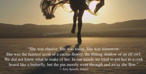 She was elusive. She was today. She was tomorrow. She was the faintest scent of a cactus flower... #stargirlquotes #stargirl #jerryspinelli #yabooks #yabookquotes