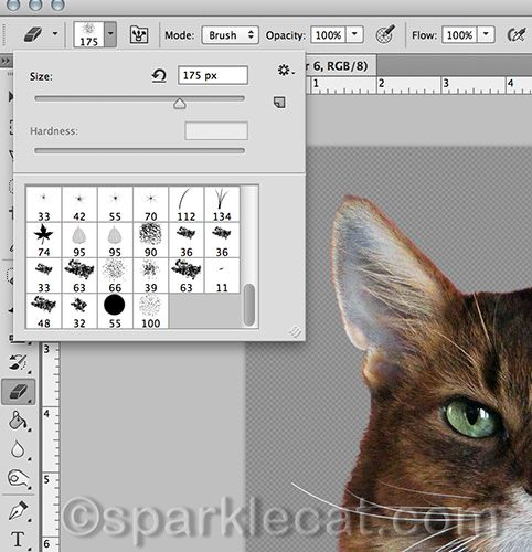 Here is a basic photo tutorial on Layers, plus some cool photo editing tips, if you spend time taking pictures of kitties: http://www.sparklecat.com/diary/caturday-art-the-layers-and-tips-edition