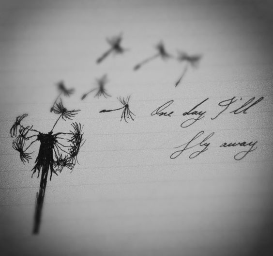 One Day I´ll Fly Away