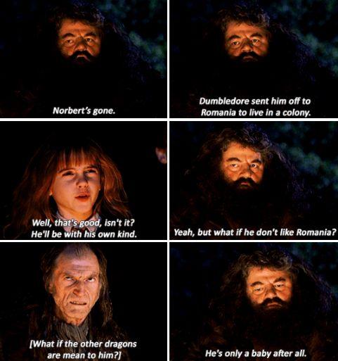 Hermione Granger, Hagrid - Harry Potter