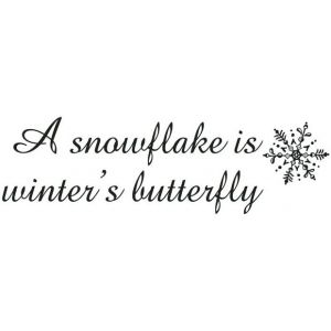 Snowflakes Are Winter's Butterfly: