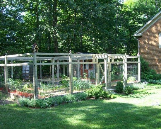 Gardens vegetables and vegetable garden fences on pinterest for Vegetable garden fence design