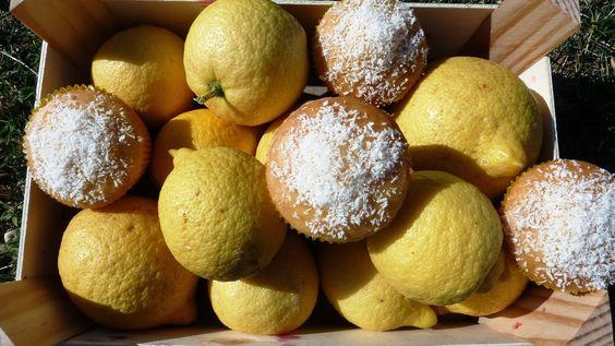 Las recetas de la tata: Magdalenas de coco y lemon curd
