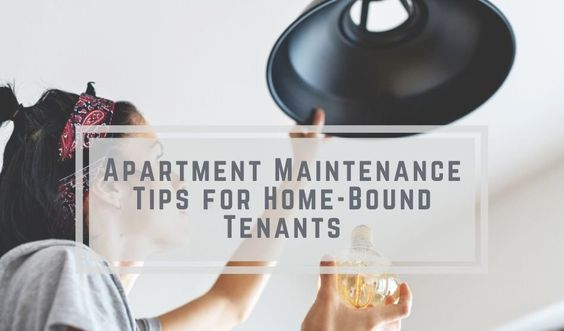 Icymi Apartment Maintenance Tips For Home Bound Tenants Rentec Blogengage In 2020 Commercial Cleaning Supplies Tenants Maintenance