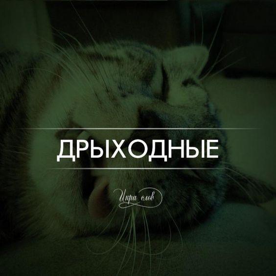 https://i.pinimg.com/564x/32/b3/71/32b37165f4220ca9527b3bc16b7e3a25.jpg