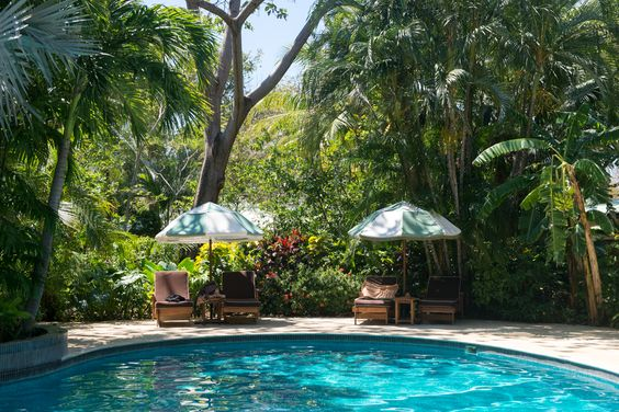 Harmony Hotel, Nosara, Costa Rica.  Harmony Hotel is Nosara's best luxury boutique hotel, with immaculate palm tree-shaded grounds, a big swimming pool, stylish rooms, a beautiful open-air yoga studio and a great juice bar.: