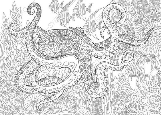 Adult Coloring Page Octopus And Fish Zentangle Doodle