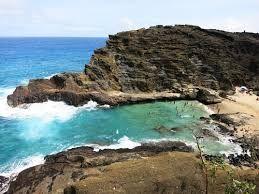 ハロナビーチコーブ /hawaii