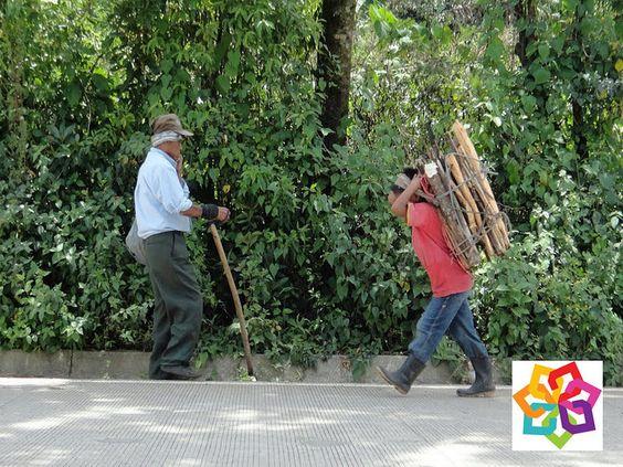 MICHOACÁN MÁGICO TE DICE ¿Qué hacen hombres y mujeres de acuerdo a las tradiciones Purépechas en Michoacán? En el seno de las comunidades purépechas por ejemplo, el destino se marcaba al momento de nacer, si se era niña, sería kamata uri podría ser atolera y por extensión cocinera) si fuera niño, iwiri, leñador o trabajador del cerro. http://www.hzirahuen.com/