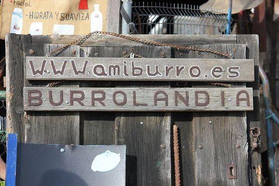 """Cortesía de Amigos del Burro, Coordenadas GPS: N 40º 37'  26""""  -  W 3º  40'  48"""", Madrid (España)."""