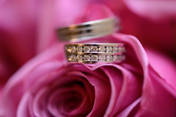 Rings I by Galina Tcivina on 500px  Flower and ring shot