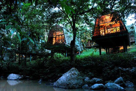 Borneo Safari - Best Borneo Lodges to visit on your Borneo Holiday   Wildlife Trails