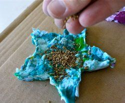 Shredded Paper Seed Starters