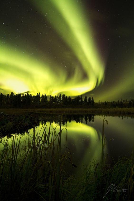 Auroras Boreales desde el Parque Nacional Isla Elk, Alberta, Canad.-