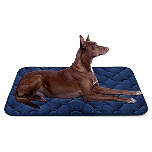 The 50 Toughest Dog Beds Don T Go Flat And Or Chew Proof Tough Dog Beds Dog Pet Beds Dog Bed Mat