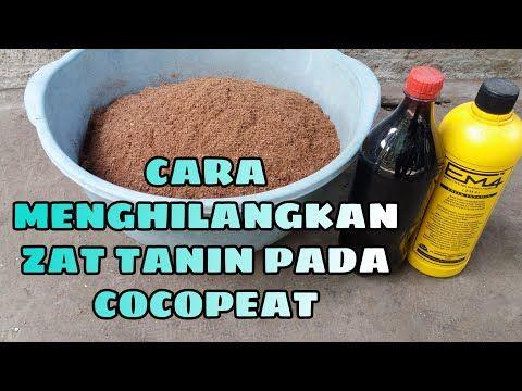Cara Menghilangkan Zat Tanin Pada Cocopeat