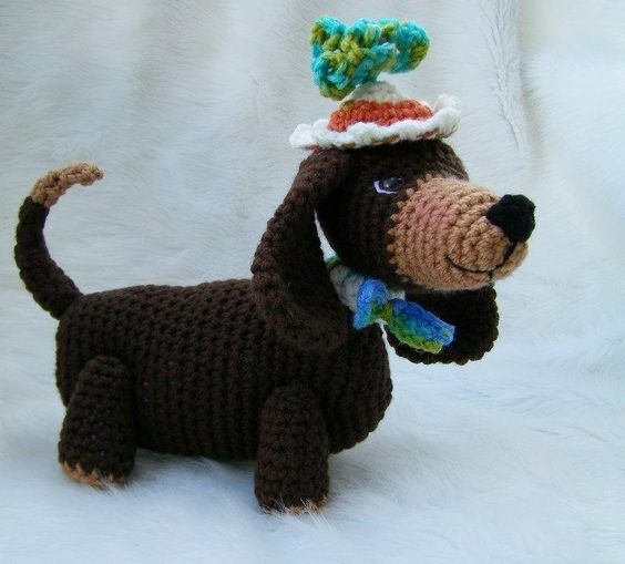 Simply Cute Dachshund Dog
