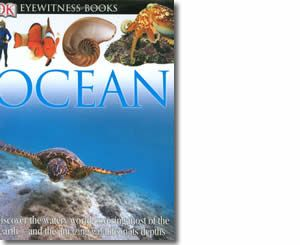 Ocean by Miranda Macquitty. Summer books for kids.