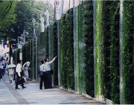Temporary Living Wall for Construction: