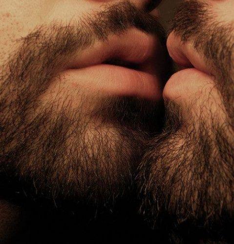 Hairy Kiss 38