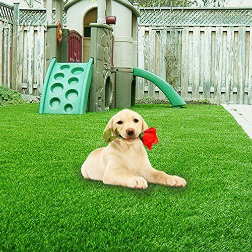 Top 10 Best Rated Artificial Grass For Dogs In 2020 Reviews The Best Spec In 2020 Artificial Grass For Dogs Artificial Grass Grass Carpet