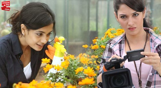 Unique Professions Practiced by Leading Tollywood Ladies Read more at http://blog.releaseday.com/features/top-list/unique-professions-practiced-by-leading-ladies/