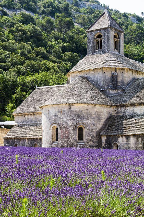 Sénanque Abbey - a Cistercian abbey near the village of Gordes in Provence  Stone & Living - Immobilier de prestige - Résidentiel & Investissement // Stone & Living - Prestige estate agency - Residential & Investment www.stoneandliving.com