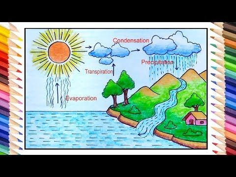 How To Draw Water Cycle Easy Water Cycle Drawing Step By Step For Beginners Youtube Water Drawing Water Cycle Drawing Water Cycle Drawing For Kids