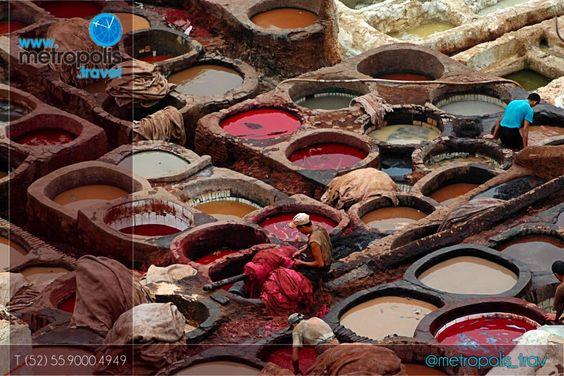 Visita las tenerías de Fez! Esta ciudad marroquí es muy famosa por la calidad de sus productos de cuero. Sus tenerías vienen...