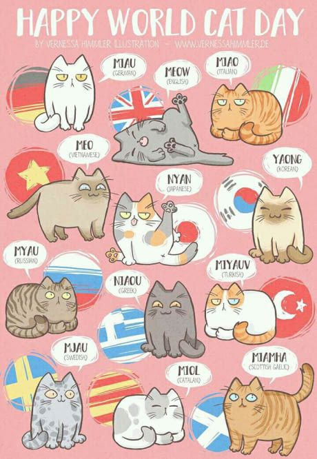 How cats meow in other countries
