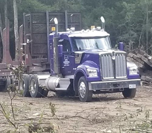 Out Of The Swamp Kenworth W990 Takes The Spotlight At Goodson S