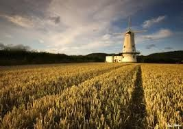 Image result for Llancayo Mill near Usk, South Wales.