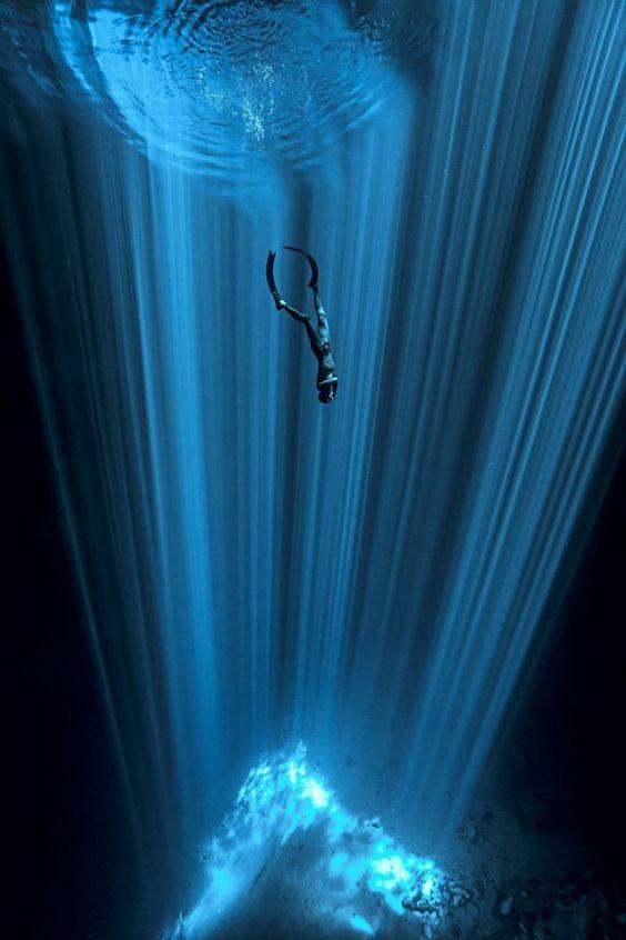 Fotografía subacuática - Página 3 32ec2afc1f8ab6652415a2a3b82c5ca4
