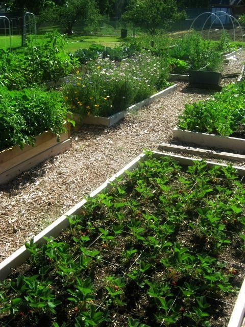 Garden www.utahhomesguy.com/9707dunsinanedr