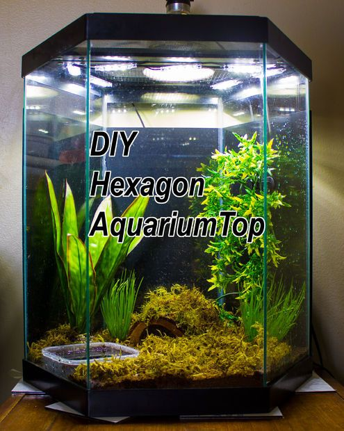 Diy led hood for a 20 gallon hexagon aquarium tank for 20 gallon hexagon fish tank