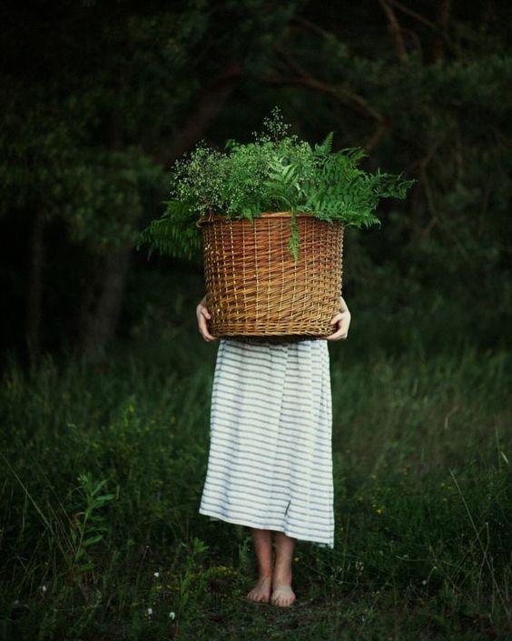 """oldfarmhouse: """" Son de Flor @instagram """""""