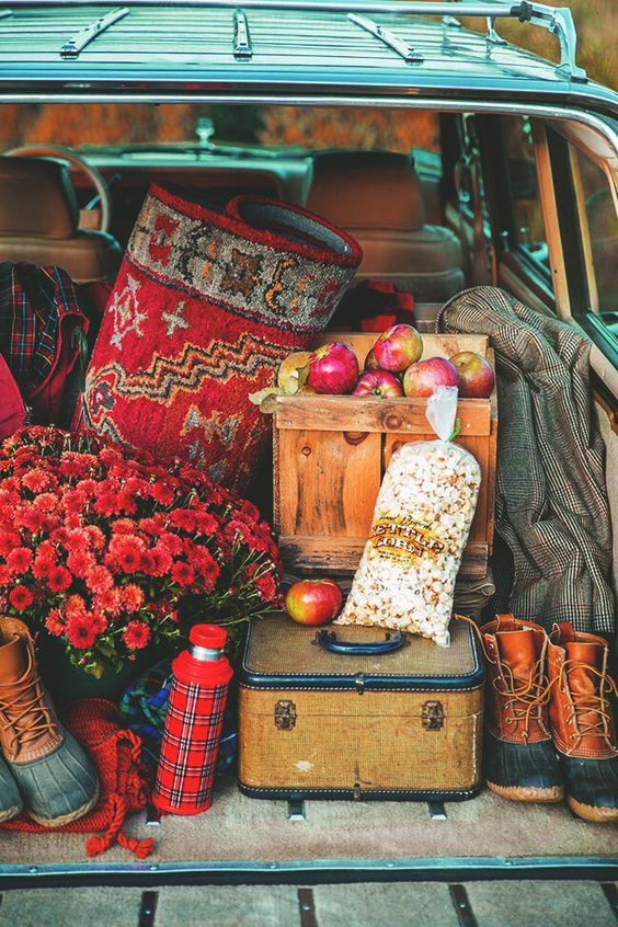 Some of my favorite stuff happens in the Fall - mums, boots, bushels of apples, kettle corn from the farmer's market, tweed jackets...  ~~  Houston Foodlovers Book Club: