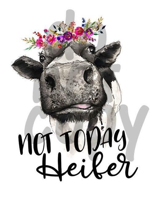 "/""Not my Pasture not my Bullshit/"" Cow Reflective or Matte Vinyl Decal Sticker"