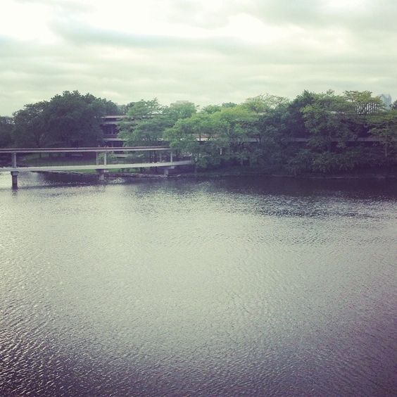What a serene shot of the lake - we love taking mid-day strolls during the summer months.