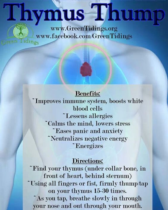 Image result for thymus health tips