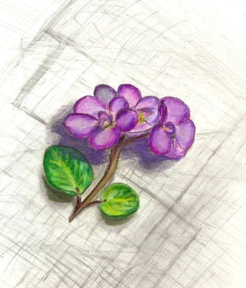 African violet tattoo idea