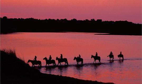 Horseback Riding - Dalmatia: Zadar - Nin at nightfall
