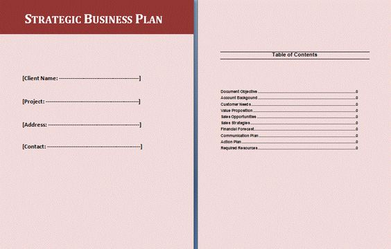 Strategic Business Plan Examples  Fyi    Business Plan