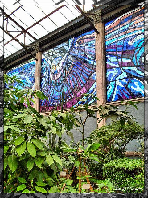 Jardin Botanico Toluca Mexico.: Mexico,  Glasshouse, Wondrous Stained Etchedglass, Mexico, Mexiko Costa Rika Qatemala El
