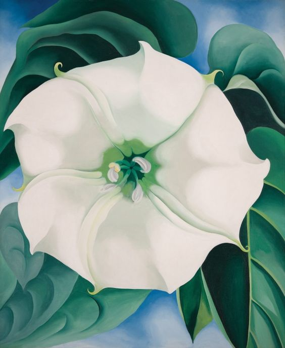 Georgia O'Keeffe now open at Tate Modern. Jimson Weed/White Flower No. 1 1932 Crystal Bridges Museum of American Art, Arkansas USA © 2016 Georgia O'Keeffe Museum/DACS, London.  Photograph by Edward C. Robison III