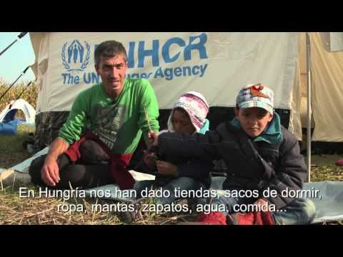ACNUR Comité Español. Ayuda de emergencia a los refugiados.