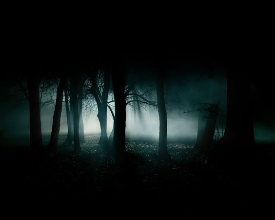 These stage is during the last scene when Dorothy turns bad. The forest turns dark and only one light is on in the background. That light creates a hard contrast with shadows.