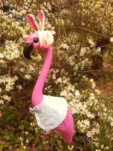 Easter Mingo: Flamingos Daisies, Flamingos Ideas, Loves Flamingos, Pink Flamingos, Flamingos Frenzy, Fabulous Flamingos, I Love Flamingos, Plastic Flamingos, Flamingos Dance
